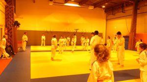judo 295