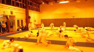 judo 296