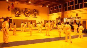 judo 300