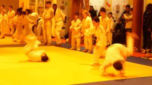 judo 305