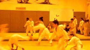 judo 306