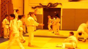 judo 307