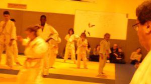 judo 310