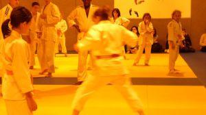 judo 311