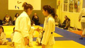 judo 333