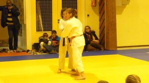 judo 334