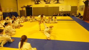 judo 341