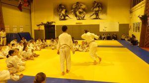 judo 342