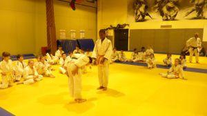 judo 343