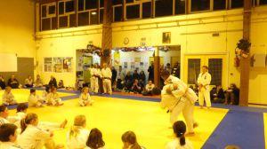 judo 345