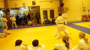 judo 350