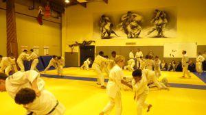 judo 353