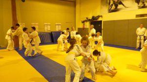 judo 354