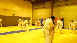 judo 355