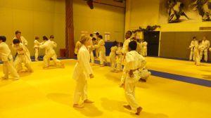 judo 356