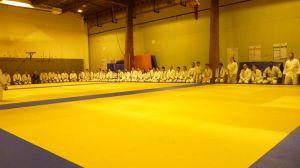 judo 363