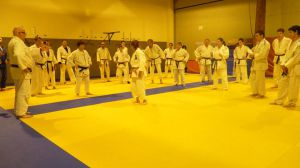 judo 366
