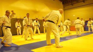 judo 368