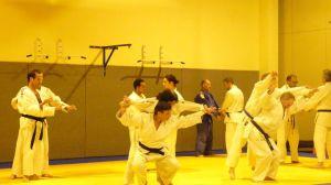 judo 380