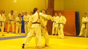 judo 389