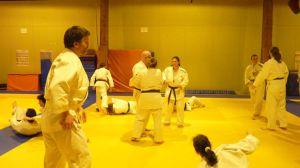 judo 390