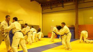 judo 391