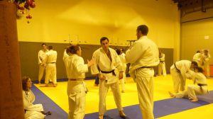 judo 393