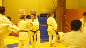 judo 395
