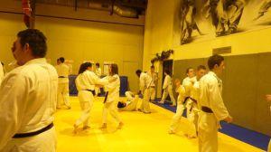 judo 401