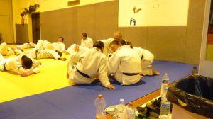 judo 408