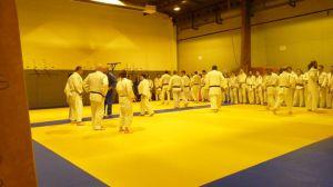 judo 409