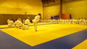 judo 410