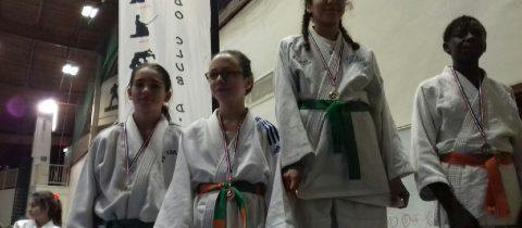 Championnat des Yvelines à Elancourt